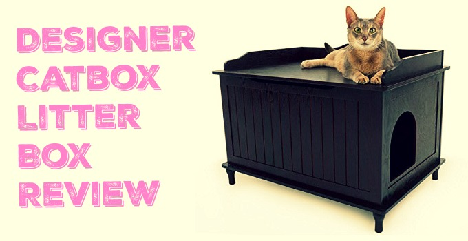 The Best Dog Proof Litter Boxes How To Keep Dogs Out Of