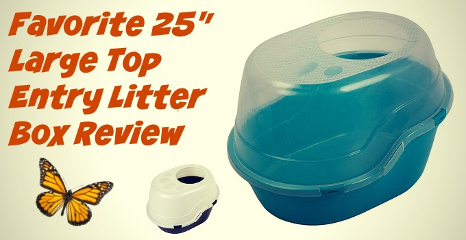 Favorite-Large-Top-Litter-litter-Box