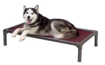 kuranda-walnut-pvc-dog-bed