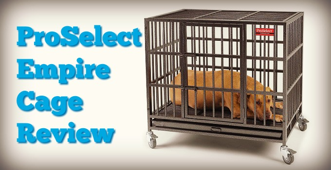 ProSelect-Empire-Dog-Cage