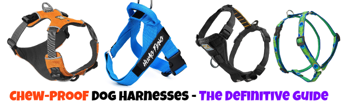 chewproof-harness-for-dogs