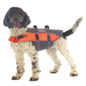 dog-wearing-outward-hound-life-vest