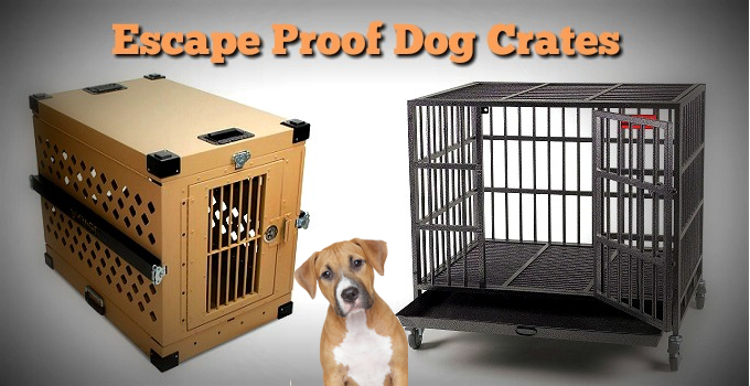 Large Escape Proof Dog Cage