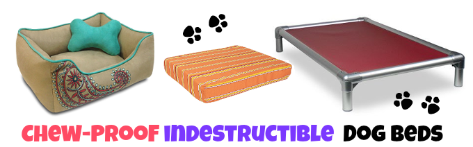 the best indestructible chew proof dog beds | tough doggy beds