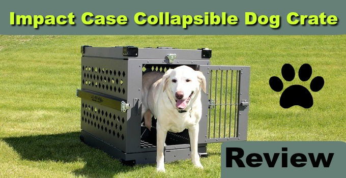 impact case collapsible dog crate review - Collapsible Dog Crate