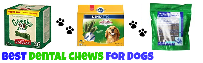 best-dental-dog-treats