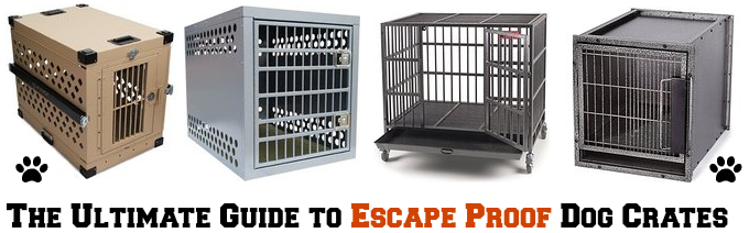 The Best Indestructible, Escape Proof & Heavy Duty Dog Crates in 2017