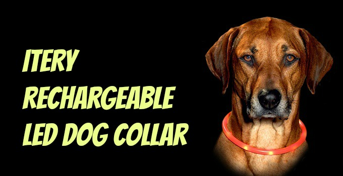 ITERY Rechargeable led dog collar