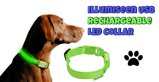illumiseen-usb-rechargeable-dog-collar