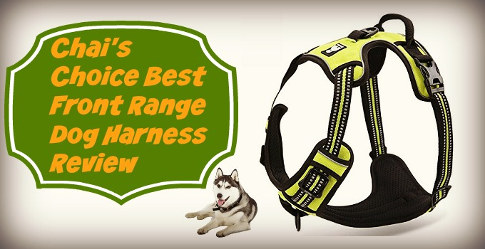 Chais-Choice-Best-Front-Range-Dog-Harness