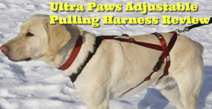 Ultra-Paws-Adjustable-Pulling-Harness