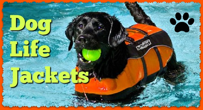life savers for dogs