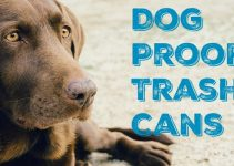 The Ultimate Dog Proof Kitchen Trash Can Guide | Locking Pet Proof Cans