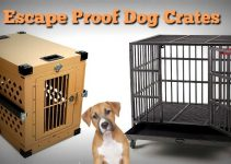 Wooden Dog Crates That Look Like Furniture Luxury Crate