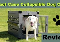 Impact Case Collapsible Dog Crate Review