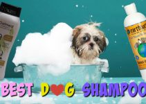 The Best Shampoo for Dogs – Waterless – Flea | Nice Smelling | Dry Skin