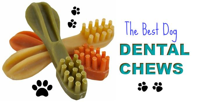 the-best-dog-dental-chews